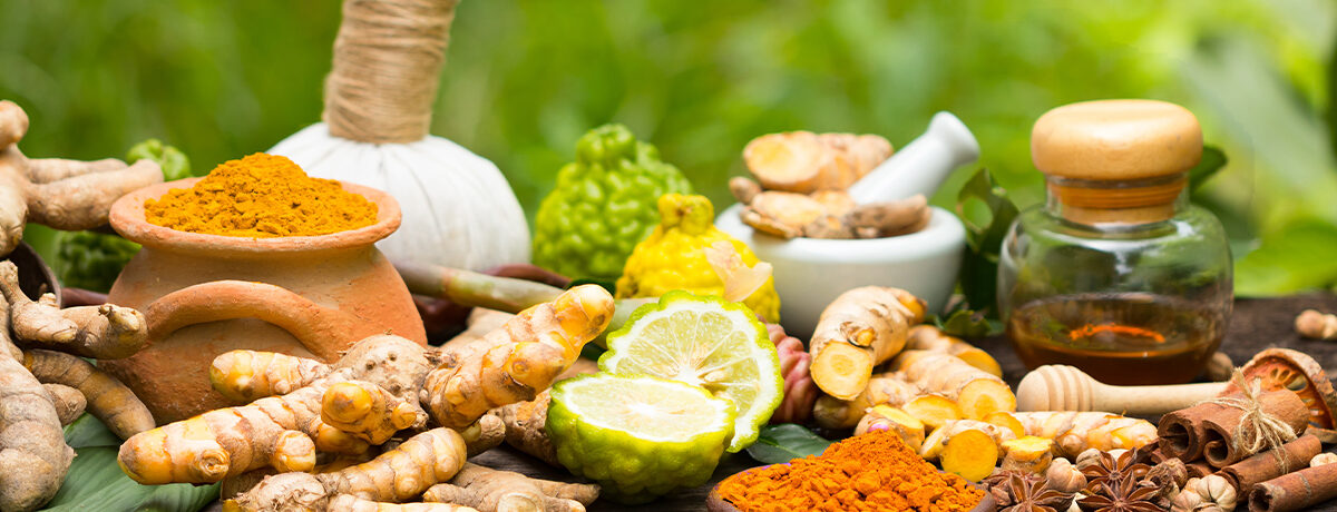 Herbal Medicines: Common Usage and Benefits